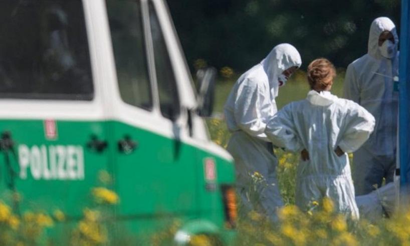 Труп убитой молдаванки обнаружили на окраине парка в Германии