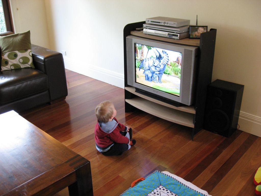 В Приднестровье 4-летний ребенок получил многочисленные травмы после того, как опрокинул на себя телевизор