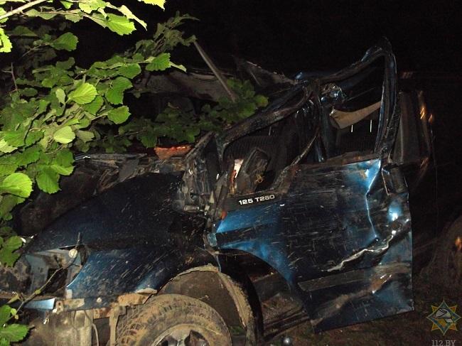 Смертельное ДТП из-за лося в Белоруссии: микроавтобус из Молдовы сбил животное и врезался в дерево (ФОТО 18+)