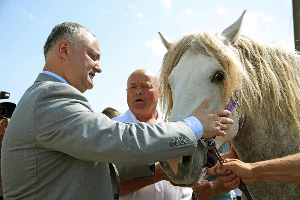 Президент поделился впечатлениями от гагаузского праздника Hederlez