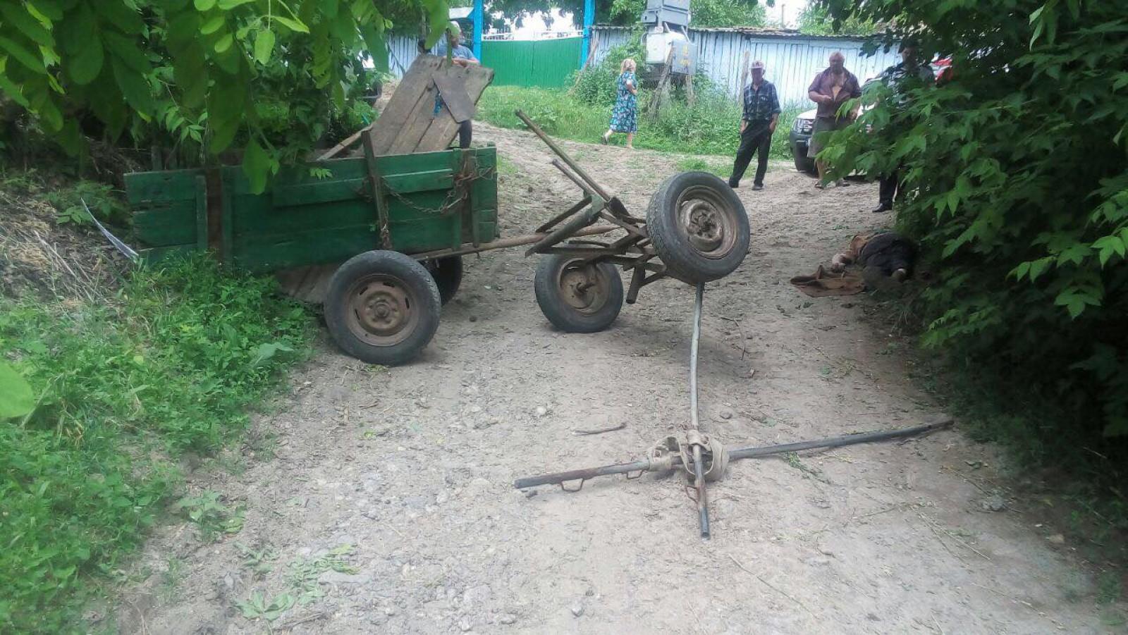Житель Резины погиб на месте, после того как влетел на телеге в дерево