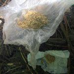 В Кишинёве среди бела дня задержали подозреваемого в употреблении психотропных веществ