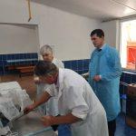 Спецгруппа огласит причину массового отравления в лагере Тараклии в четверг