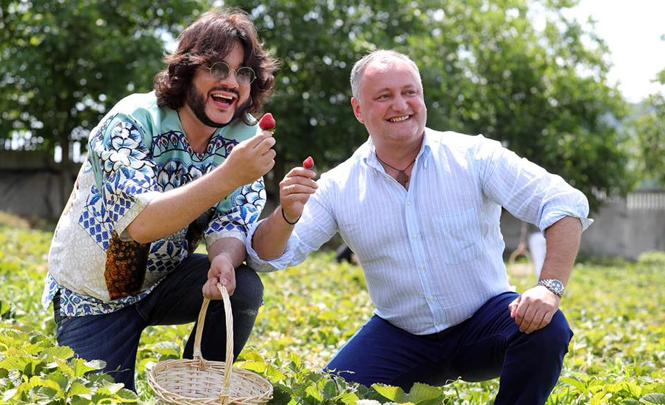 Додон и Киркоров вместе собрали клубнику в родном селе президента (ФОТО, ВИДЕО)