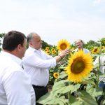 Додон: Земля и люди – самое большое богатство Республики Молдова (ФОТО)