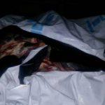 Более 300 кг баранины без документов чуть не попало на столичные прилавки