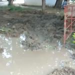 """Жители столичной улицы, напоминающей грязное месиво, передали видеопривет """"Apă-Canal"""" (ВИДЕО)"""
