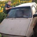 В Сынжерейском районе автомобиль угодил в поле подсолнечника: есть раненые (ФОТО)