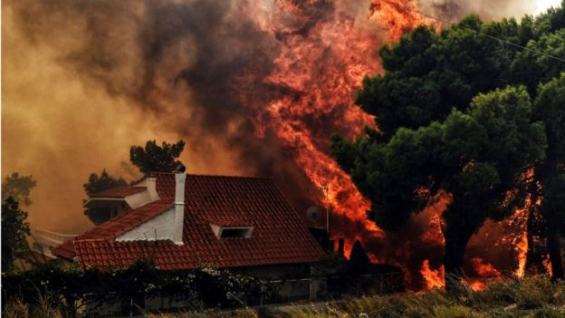 """Живущий в Греции молдаванин: """"Всё, что было вокруг дома, сгорело"""" (ВИДЕО)"""