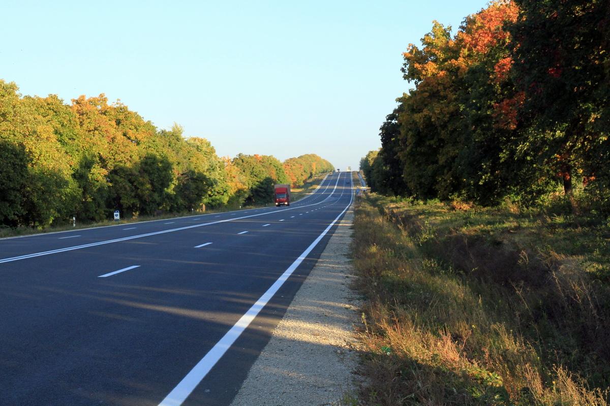 Национальный день озеленения пройдет в Молдове 26 октября