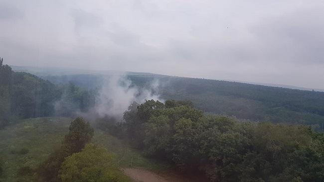 Пожар в Кишинёве: на Рышкановке задымилась постройка рядом с лесом (ФОТО, ВИДЕО)