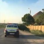 """""""Сегодня будет весело"""": полицейских застали за перевозкой конопли в служебной машине (ВИДЕО)"""
