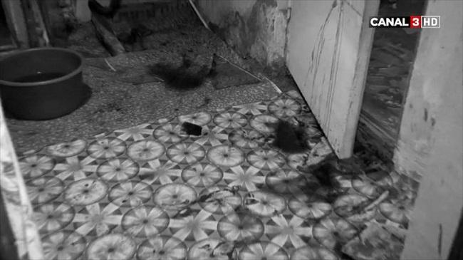 В Кишинёве ссора квартирантов закончилась кровавой дракой (ВИДЕО)