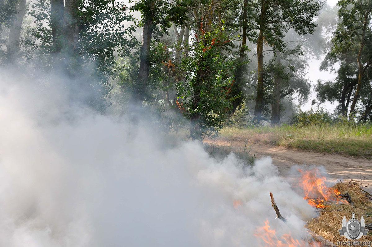 Учения в Приднестровье: спасатели инсценировали тушение пожара в лесу