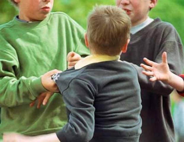 В лагере в Вадул-луй-Водэ 13 детей были избиты двумя пьяными несовершеннолетними