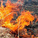 30 случаев возгорания сухой травы и мусора произошло в Приднестровье только за трое суток