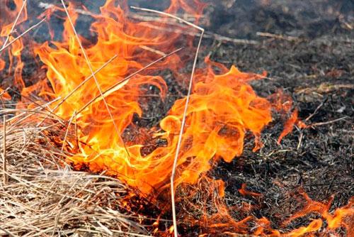 Искры от сгоревших листьев стали причиной пожара в Рыбнице