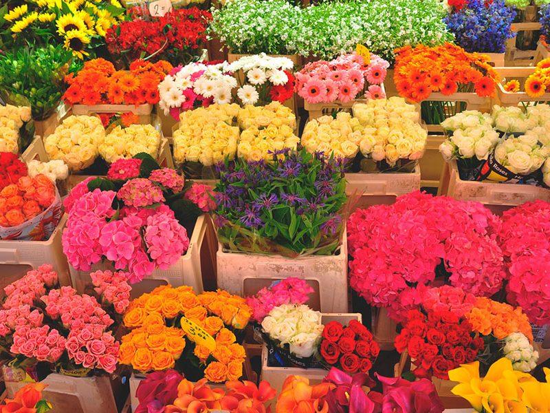 Какую прибыль получили цветочники в День влюблённых: объём продаж значительно возрос