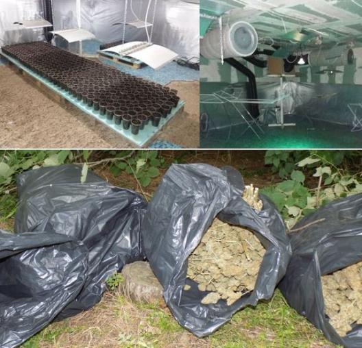 Крупная интернациональная банда наркоторговцев раскрыта в Болгарии: задержан молдаванин (ВИДЕО)