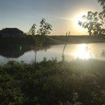 Житель Гагаузии утонул, пытаясь собрать плавающих в водоёме гусей
