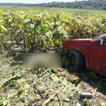 ДТП в Новоаненском районе: водитель скончался (ФОТО)
