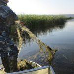 8 нарушителей, более 6 сетей и штраф в 3 тысячи леев: Служба рыбоохраны провела очередной рейд у водоёма Дубоссар (ФОТО)