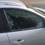 Владелец иномарки обнаружил утром своё авто в плачевном состоянии после нашествия воров (ФОТО)