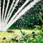 Молдавские фермеры смогут использовать воду из частных озёр для полива земель
