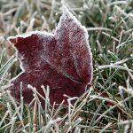 На Молдову надвигаются первые заморозки