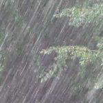 ГИЧС: Сильный дождь и град нанесли серьёзный урон урожаю в Унгенском и Леовском районах