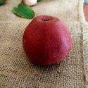В Молдове впервые выведен сорт яблок с красной мякотью (ФОТО)