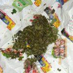 Коноплю и растительную массу со специфическим запахом изъяли во время обысков в Гагаузии (ФОТО)