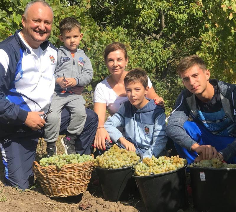 Красивую молдавскую традицию изготовления вина показал президент на видео