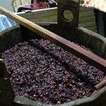 Зашла в погреб и чуть не задохнулась: вино едва не стало причиной смерти жительницы Басарабяски