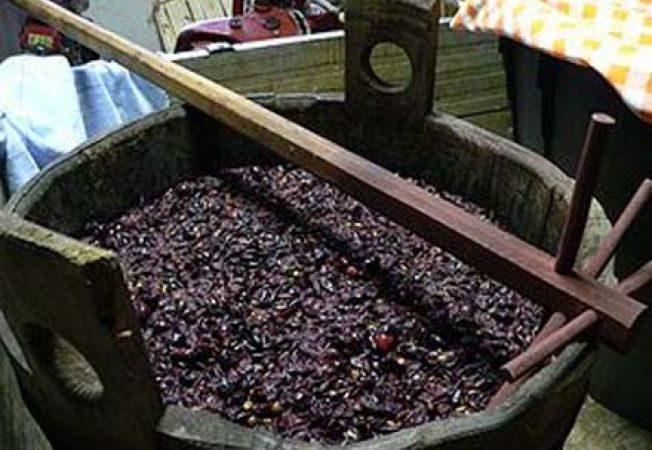 Жительница Тараклии скончалась от отравления продуктами брожения вина