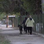 Зоозащитница из Бельц превратила свою квартиру в приют для животных (ВИДЕО)