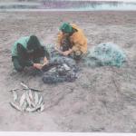 Более 6 тысяч леев штрафа получили рыбаки за нелегальную ловлю рыбы