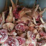 Страшную антисанитарию обнаружили при перевозке мяса в Кишиневе (ФОТО)