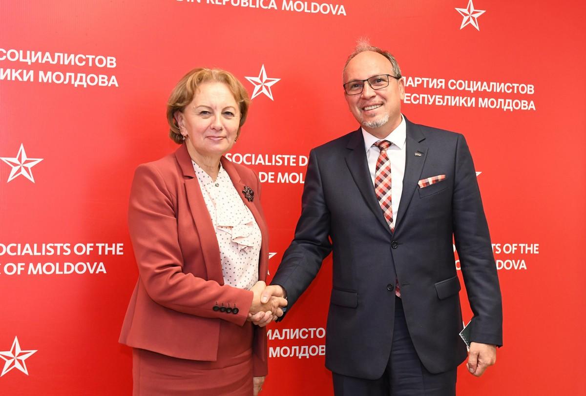 Гречаный обсудила важные вопросы с послом Румынии в Молдове
