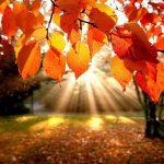 Неожиданный сюрприз преподнесет жителям Молдовы погода в последний уикенд октября