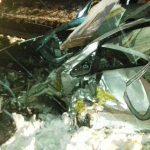 Сильная авария в Будештах: двое госпитализированы в тяжёлом состоянии