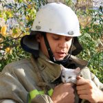 В Приднестровье пожарные пришли на помощь застрявшим на деревьях уличным котам (ФОТО)