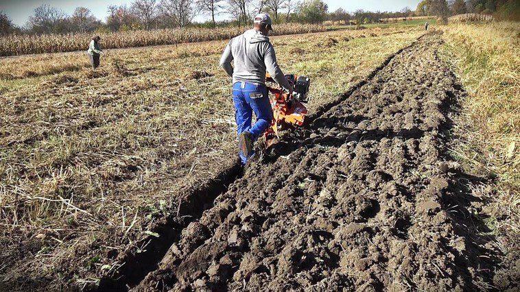 Несчастный случай в Дубоссарах: мужчина скончался при работе в огороде