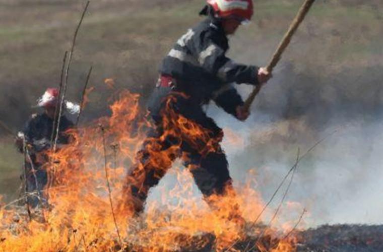 За последние сутки в Молдове огонь охватил более 40 гектаров земли (ВИДЕО)