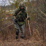 Сапёры Нацармии обнаружили 66 бомб в Хынчештском районе