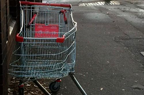 Двое подростков рискуют получить срок за кражу тележки из магазина