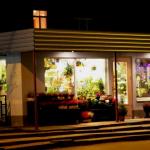 Молдаванин с товарищем напали на продавщицу ночного магазина цветов в Виннице