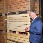 Додон: Договоренность с Путиным приведет к росту экспорта аграрной продукции из Молдовы (ФОТО)