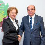 Гречаный обсудила итоги официального визита президента в РФ с послом России (ФОТО)