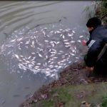 Пойман с поличным: молдаванин незаконно рыбачил в пограничных водах (ФОТО)